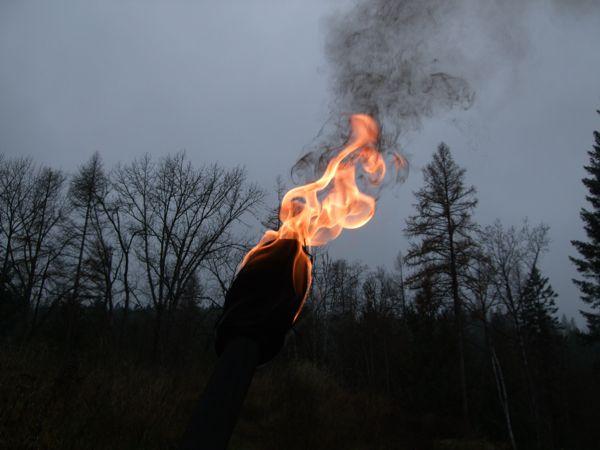 Fire111410