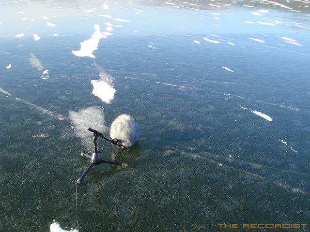 Ice Jan 2012