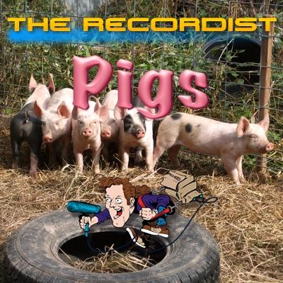 Pigs-HD-Pro-Cover-Art-400