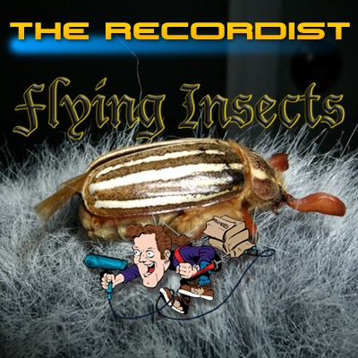 Flying-Insects-HD-Pro-Cover-Art-400
