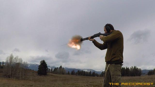 Shotguns-160310_6